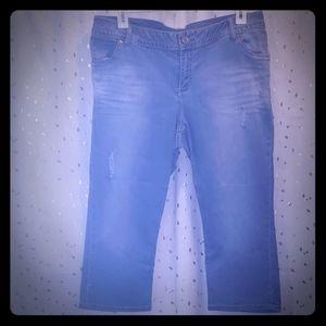 Lane Bryant Capri size 20 jean